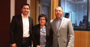 Investigadores: Cristián Álvarez (U. de Chile), María Isabel Toledo (UDP) y Luis Gabriel Guajardo (Facso - UDP)