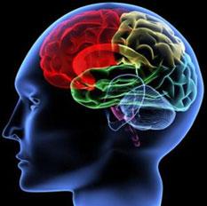 neuropsiquiatria_infanto_juvenil