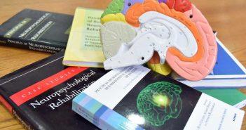 El 1er. Congreso Chileno en Rehabilitación Neuropsicológica se realizará el 6 de diciembre en la Facultad de Psicología UDP